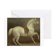 Beautiful White Horse Greeting Cards (Pk of 10)
