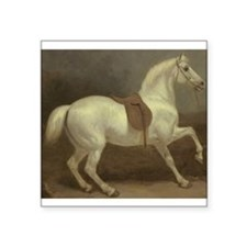 Beautiful White Horse Sticker
