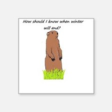 I'm just a groundhog! Sticker
