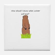 I'm just a groundhog! Tile Coaster