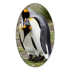 KING PENGUINS IN COURTSHIP IN SOUTH Decal