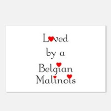 Loved by a Belgian Malinois Postcards (Package of