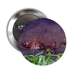 tigers relaxing Button