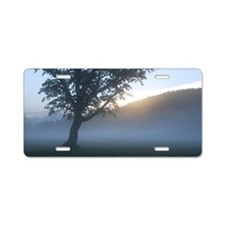 Tree in a misty field at su Aluminum License Plate