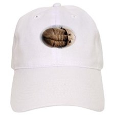 Asaphus trilobite Baseball Cap