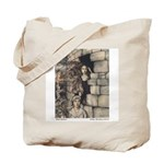 Rackham's Maid Maleen Tote Bag