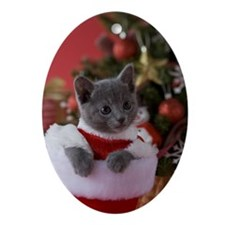 Russian Blue Kitten and Christmas Ornament (Oval)