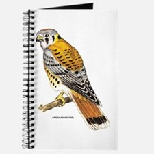 American Kestrel Bird Journal