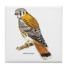 American Kestrel Bird Tile Coaster