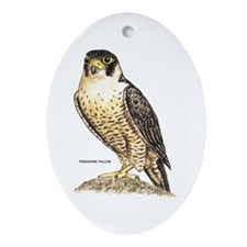 Peregrine Falcon Bird Ornament (Oval)