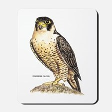 Peregrine Falcon Bird Mousepad