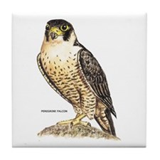 Peregrine Falcon Bird Tile Coaster