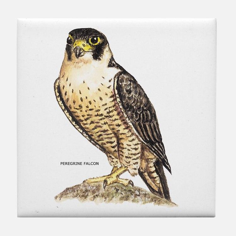 Peregrine Falcon Bird Tile Coaster