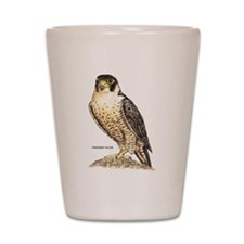 Peregrine Falcon Bird Shot Glass