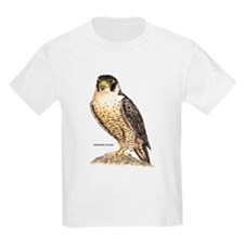 Peregrine Falcon Bird T-Shirt