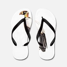 King Vulture Bird Flip Flops