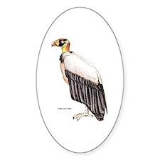 King Vulture Bird Decal