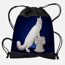 10 Drawstring Bag