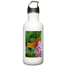 Passion Vine Butterfly Water Bottle