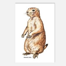Prairie Dog Postcards (Package of 8)