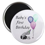 Baby's First Birthday Magnet