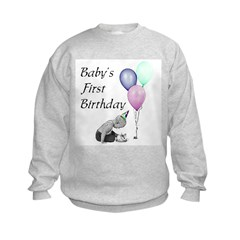 Baby's First Birthday Sweatshirt