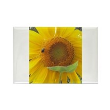 Sun Flower and Friend Rectangle Magnet
