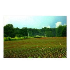 Rows - Postcards (Package of 8)