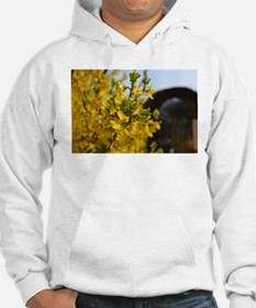 yellow flower bush Hoodie