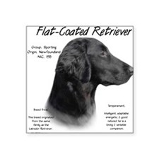 Flat Coat Rectangle Sticker