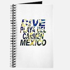 Dive Playa Del Carmen Mexico Journal