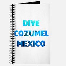 Dive Cozumel Journal