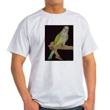 Quaker Ash Grey T-shirt