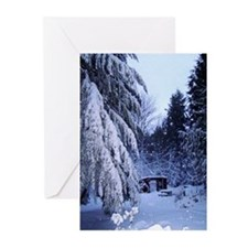Snow Scene Greeting Cards (Pk of 10)