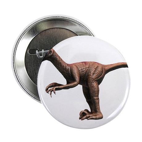 """Raptor 2.25"""" Button"""