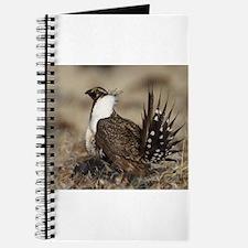 Sage Grouse Strut Journal