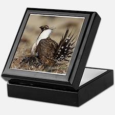 Sage Grouse Strut Keepsake Box