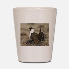 Sage Grouse Strut Shot Glass