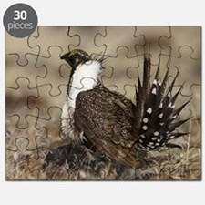 Sage Grouse Strut Puzzle