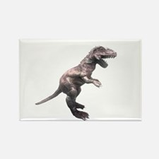 TRex Rectangle Magnet