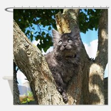 Fluffy Grey Kitten Shower Curtain
