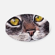 catseyes.png Oval Car Magnet