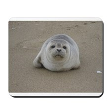 Sooo Youre Looking for a Pup Mousepad