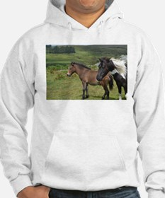 horses on the moor Jumper Hoody