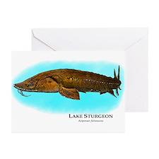 Lake Sturgeon Greeting Cards (Pk of 20)