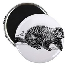 "Ground Hog Day 2.25"" Magnet (10 pack)"