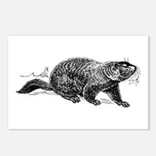 Ground Hog Day Postcards (Package of 8)