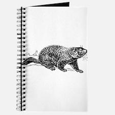 Ground Hog Day Journal