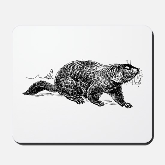 Ground Hog Day Mousepad