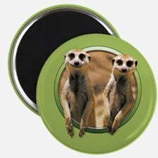 Smiling Meerkats Magnet